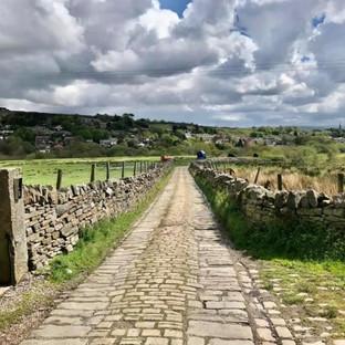 Pathway scene