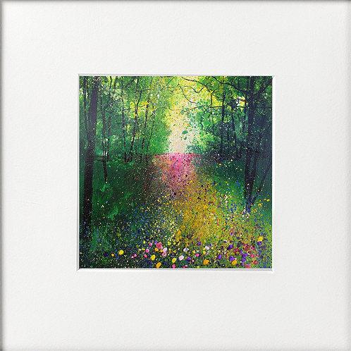 Seasons - Summer Wildflower woodland