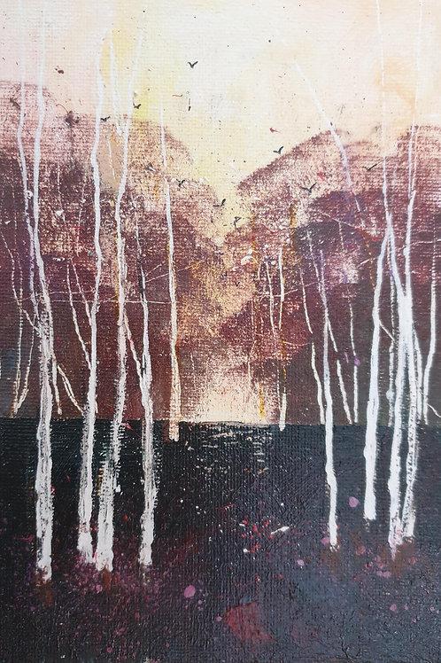 Winter Silver Birches 3