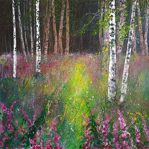 Foxgloves In Silver Birch Wood Clearing