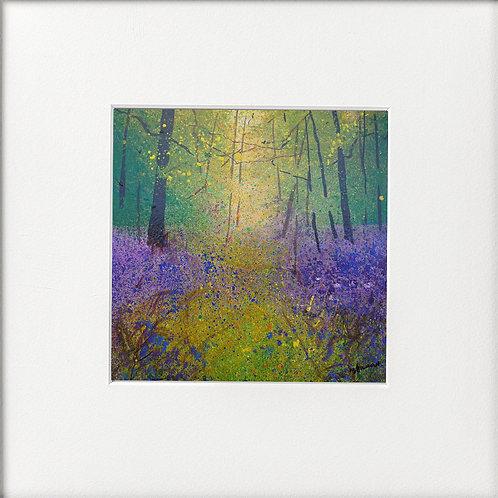 Misty Woodland Wildflowers