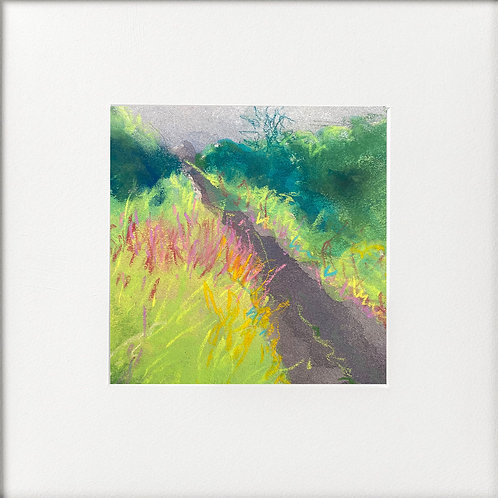 Seasons - Summer Rosebay Willowherb beside road