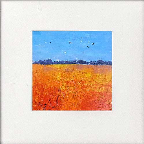 Seasons - High Summer Swallows over Orange Fields