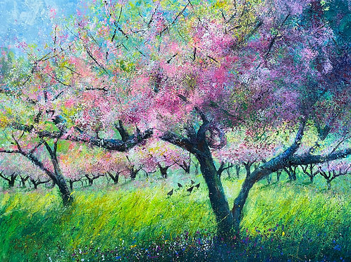 Pink Spring Orchard Blossom, Chickens