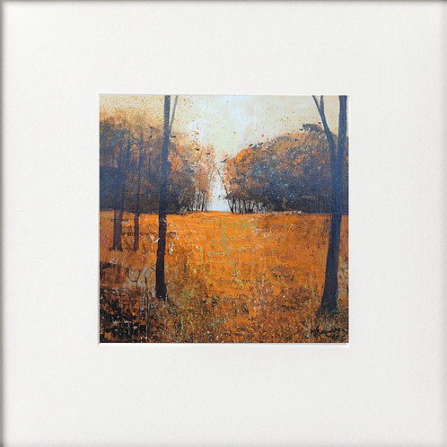 Autumn - Rooks circling Trees