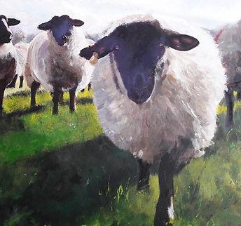 sheep under fells 4.jpg
