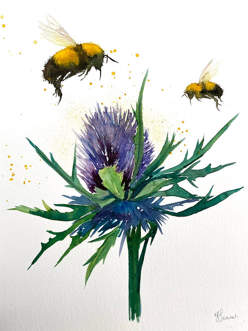 Bumble Bees & Thistle Flower