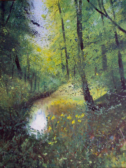 Pond  with Yellow Irises