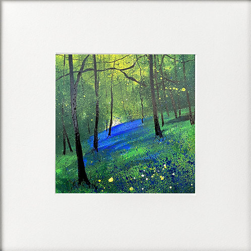 Spring - Glimpses of Bluebells