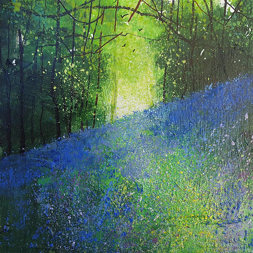 Seasons -Spring Woodland Bluebell Bank