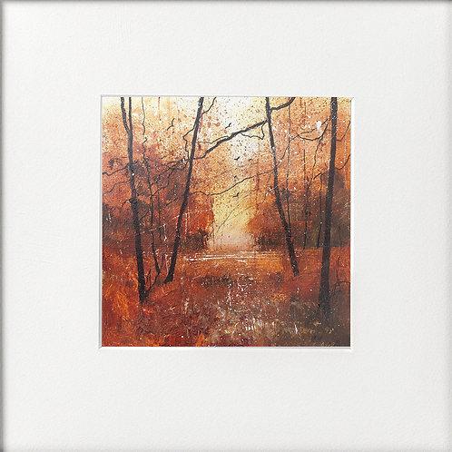 Seasons - Autumn Glow