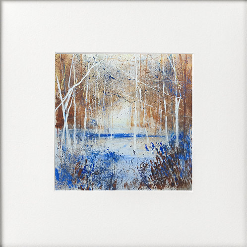 Seasons - Winter Frozen Lake under trees