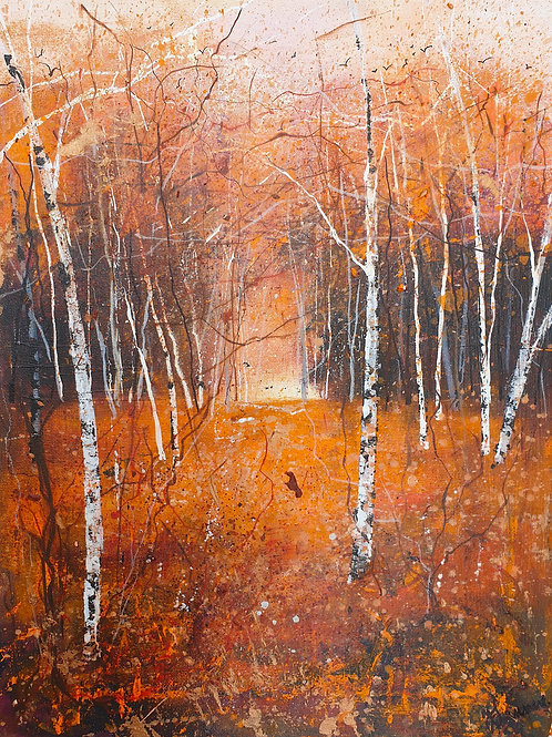 Seasons - Autumn Birches