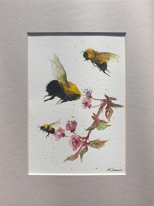 Bees & Cherry Blossom