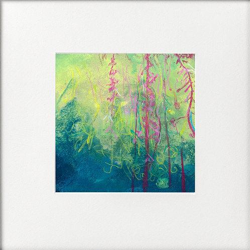 Seasons - Late Summer Last of Rosebay Willowherb