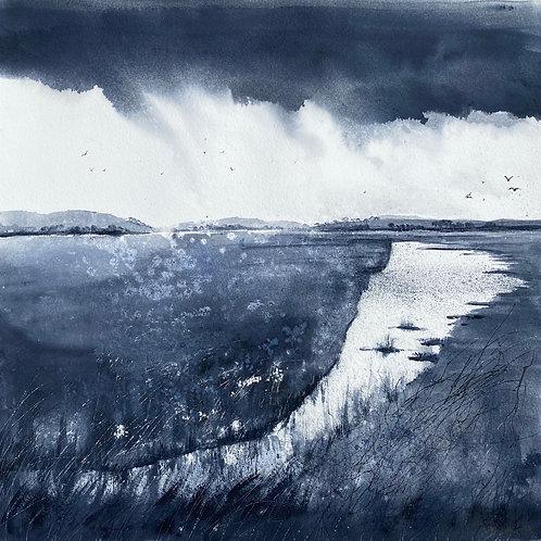 Monochrome - Marshes Under Heavy Skies