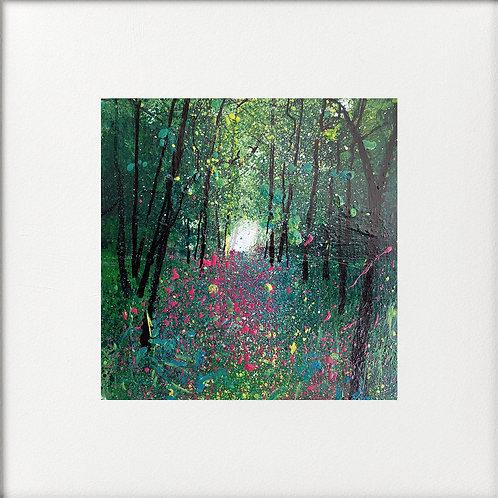 Secret Foxglove Woods