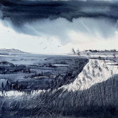 Monochrome - Rain over Marsh Reeds