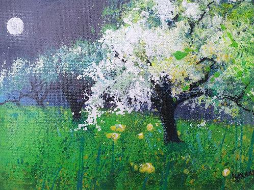 Moonlit Orchard