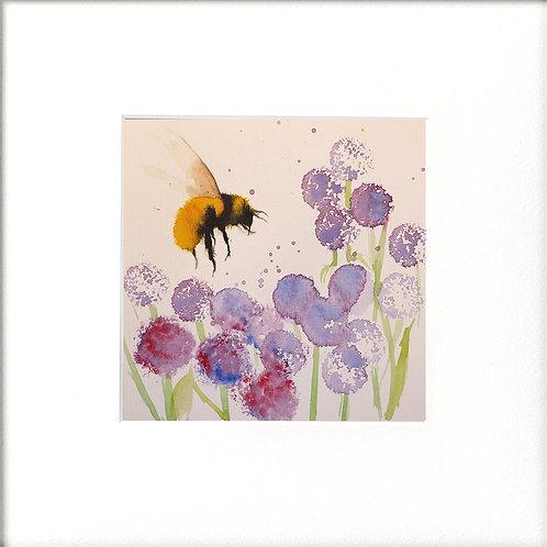 Bumble Bee & Alliums