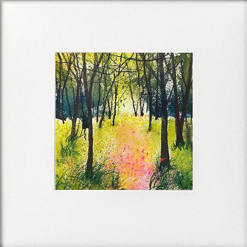 Pink Wild flower Woodland