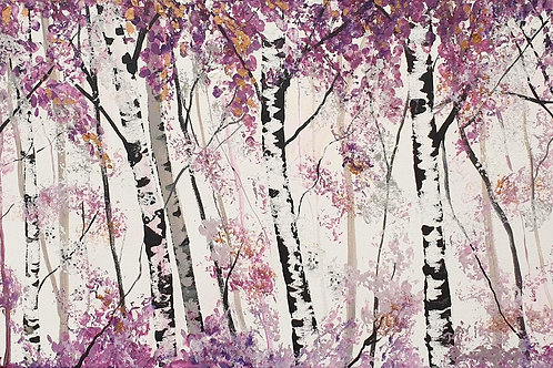 Shades of Violet Silver Birches
