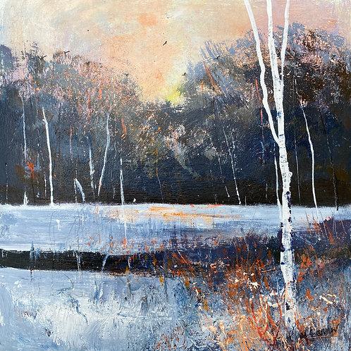 Seasons - Winter Lake