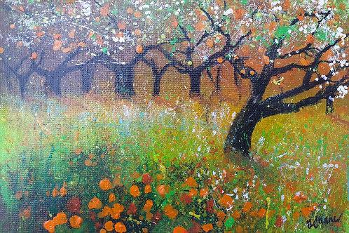 Sunny Orchard