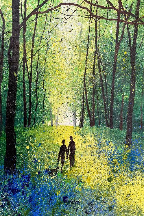 Seasons - Spring peaceful Bluebell Walk