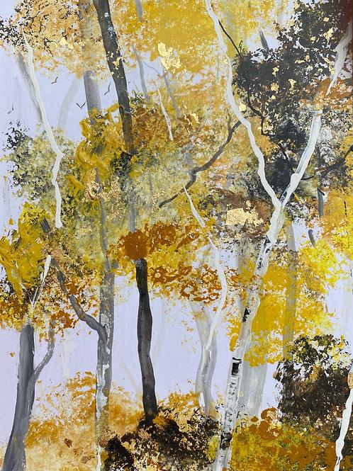 Autumn Silver Birches 2