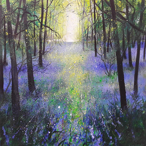 Woodland Bluebell View