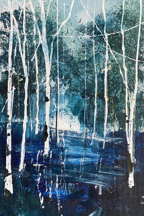 Winter Silver Birches