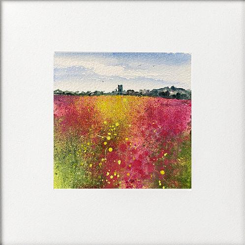 Rosebay Willowherb Fields