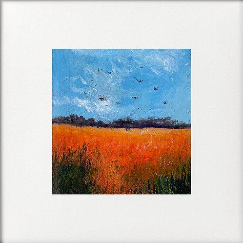 High Summer Orange Fields Swallows