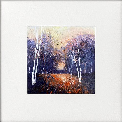 Seasons - Winter Glow, Birches