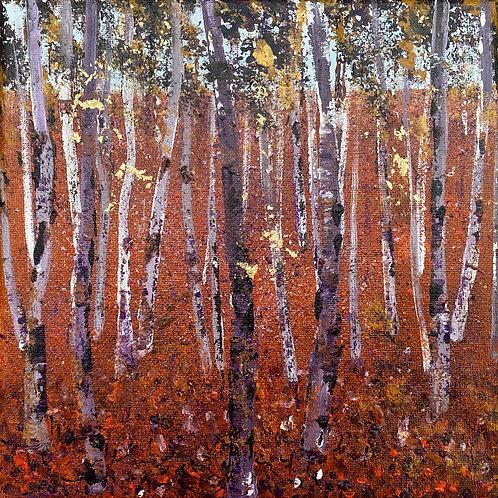 Birch Woods 2