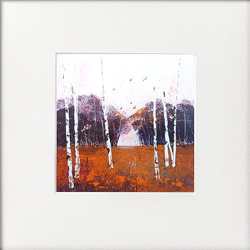 Seasons - Autumn Copice