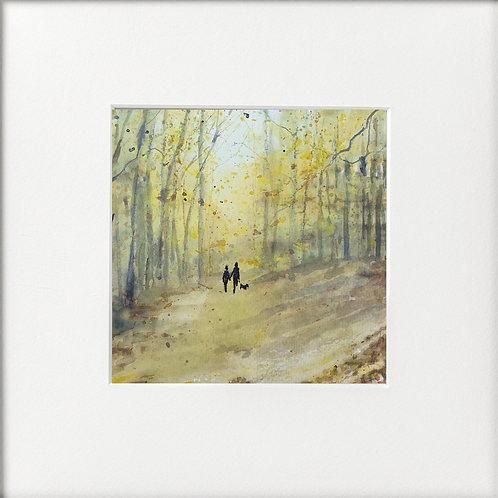 Seasons - AutumnWoodland Walk