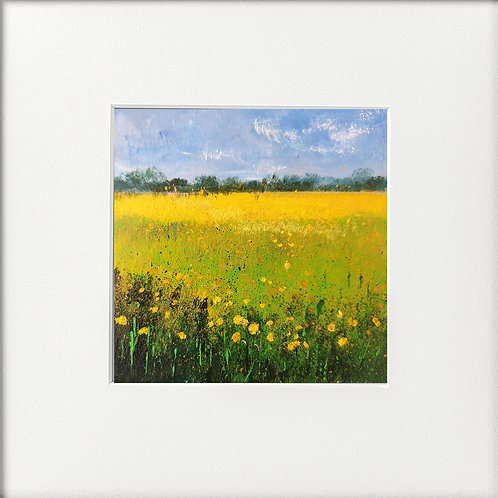 Seasons - Summer yellow Field