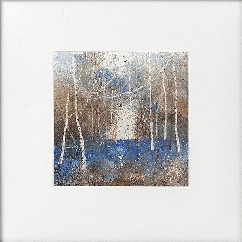 Seasons - Winter Cool tones silver birches