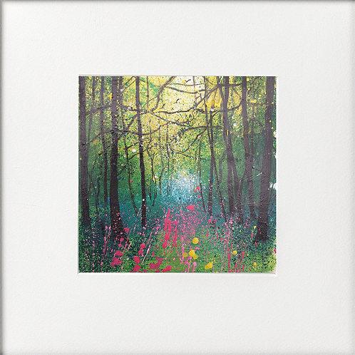 Seasons - Early summer Foxglove Clearing