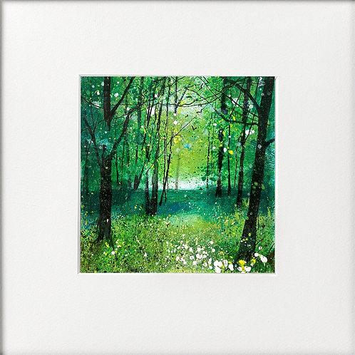 Seasons - Mid Summer Woodland