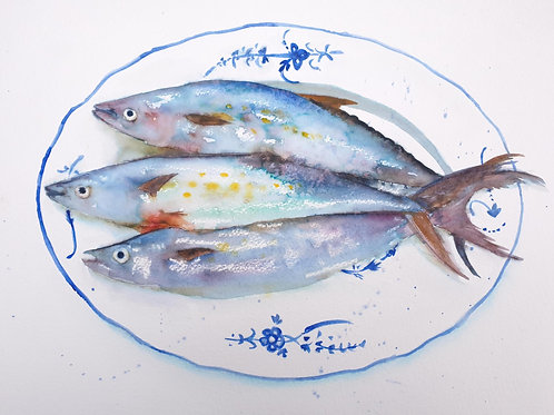 Blue Fish on Blue Plate