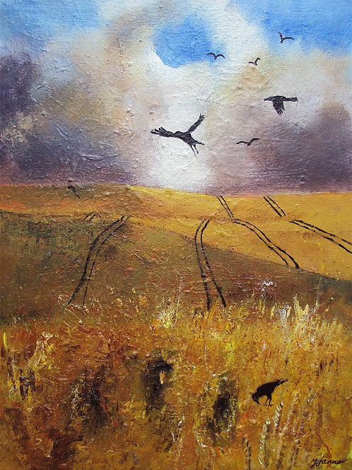 Storm over Cornfield Crows