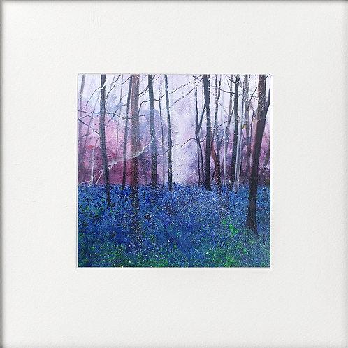 Seasons - Early Summer Bluebells Twilight