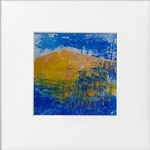 Blue Fields Reeds