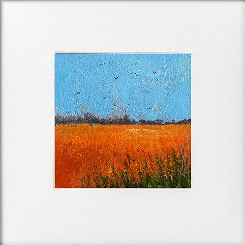 Seasons - High Summer Swallows over Field