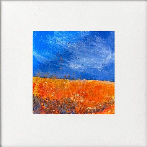 Seasons - High Summer Orange Fields under bright skies