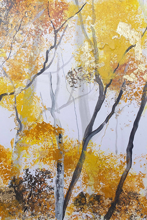 Autumn Silver Birch Trunks 3