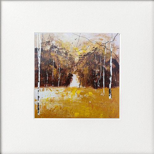 Seasons - GoldenAutumn, Silver Birches